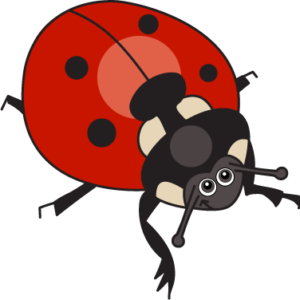 ReadngVIPs Critter Cards Lady Bug